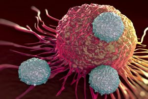 Yin And Yang Protein Revealed The Mystery Of Skin Cancer