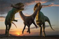 Eggshell Fossils Suggest That Dinosaurs Were 'decisively' Warm-blooded