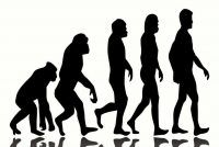 Scientist Finally Proved One of Darwin's Evolution Theories