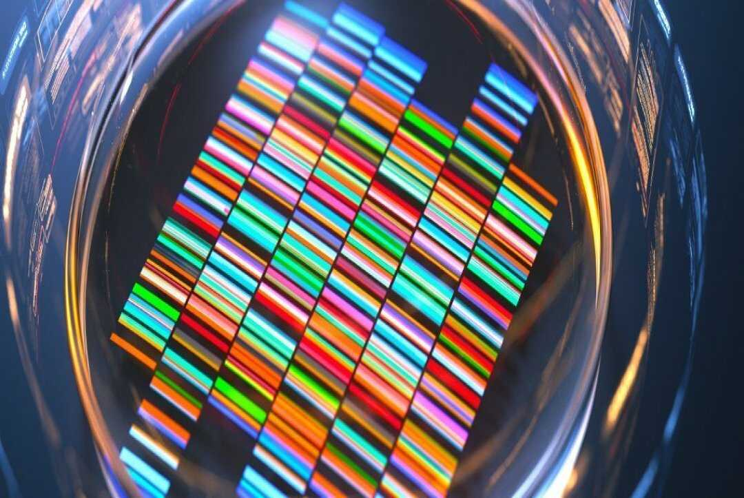 Massive Cancer Genome Study Unveils How DNA Errors Stimulate Tumor Growth