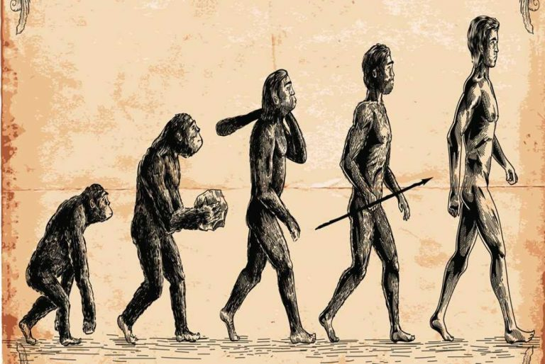 10 Mind-Blowing Facts about the evolution of life